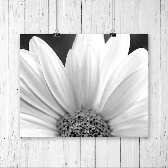 daisy print black and white flower print daisy art print