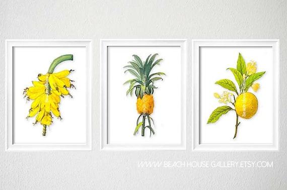 Set of Three Kitchen Prints, Fruit Art for Kitchen, Tropical Fruit Prints, Beach House Kitchen Art, Banana Print, Citrus Print, Grapefruit