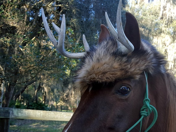 Deer Antlers For Horses Deer Horns For Horse With Faux Fur