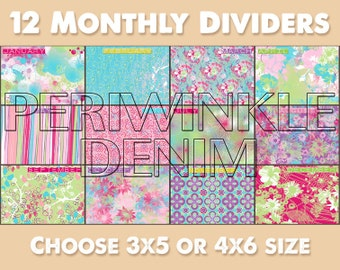 Monthly Dividers with Dated Index Cards