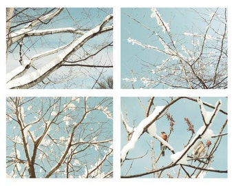 Nature Photograph - Set of 4 Nature Art - Snow In New York - Winter - Bare Tree - Snow - Birds - Tender Blue Sky - Winter Wall Gallery