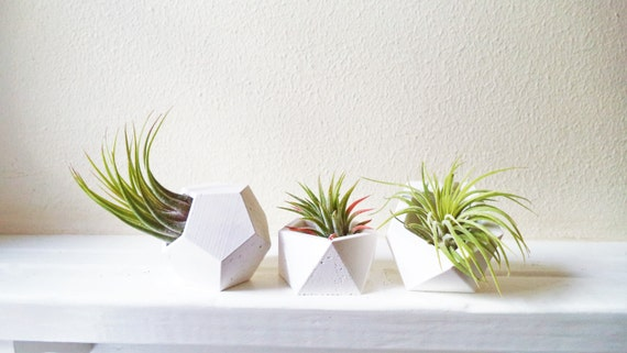 Geometric mini planters small air plant holder set modern for Geometric air plant holder