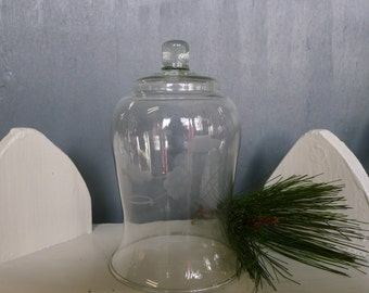 Small glass cloche with etched flowers