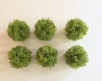 Moss Vase Filler Moss Balls Set Of 6 Moss Orbs By