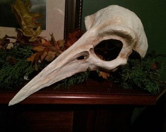 Handmade bird skull mask