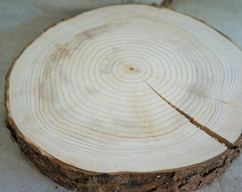 Slices of raw wood - 30 cm