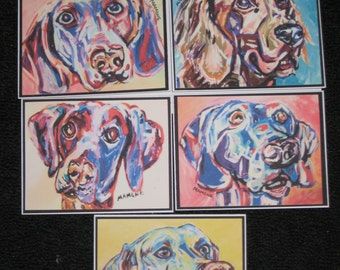Weimaraner Note Cards Variety Pack
