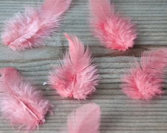 50 Salmon Pink Feathers, Small Natural Feathers, Wedding Feather, Wedding Decor, Bouquet Feathers, Bohemian Feathers, Dyed Feathers, Boho