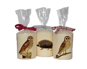 Candle/ pillar candle/ owl/ hedgehog
