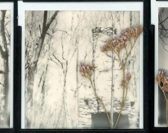 3 print 5x5 polaroid series