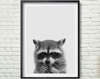 Racoon Print, Woodlands Nursery, Wall Art, Modern Minimal Black and White Animal, Printable Instant Download, Kids Room Decor *78*