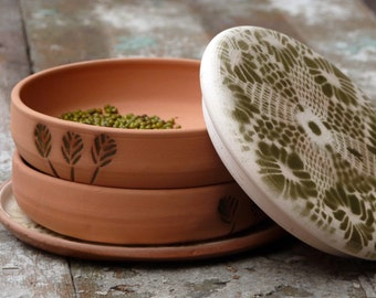 Sprouting tray, Sprouter, Terracotta Sprouter, Clay Sprouter, 4 parts Sprouting tray