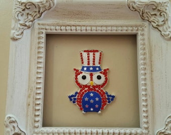 Patriotic Boy Owl Needle Minder