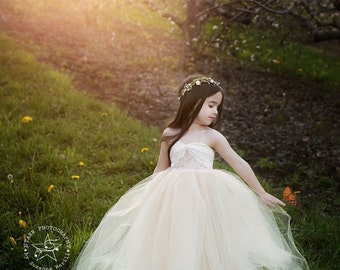 Tulle and Lace strapless gown