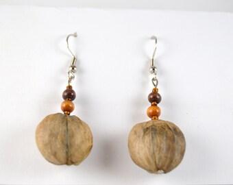 Hand-made hickory nut earrings