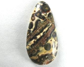 Leopardskin Jasper Cabochon