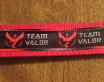Team Valor Pokemon Key Chain