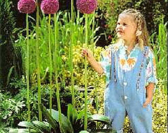 Gladiator Flowering Onion Allium 4 Bulbs - Deer Proof! - 16/18 cm Bulbs