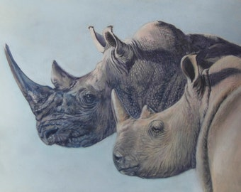 Future Hope - Limited Edition Mounted A3 print of beautiful Rhino's