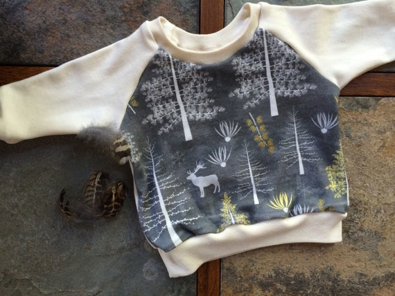 Ready to Ship - Winter Organic Baby Sweatshirt - Winter Tamaracks