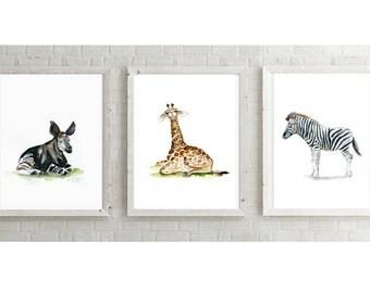 Okapi art - Giraffe painting - Zebra Art - Set of 3 young Africa animals - Zebra Watercolor giraffe baby - nursery set wild animals