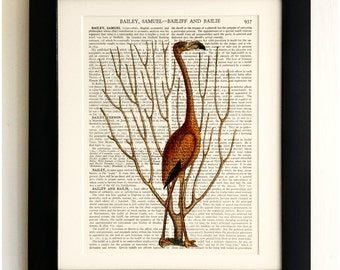 ART PRINT on old antique book page - Pink Flamingo, Butterflies, Vintage Upcycled Wall Art Print Encyclopaedia Dictionary Page, Fab Gift!