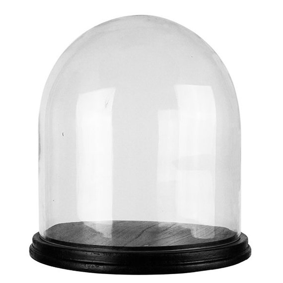 CYS Glass Cloche Dome With Black Wood Base. H-11 Cloche