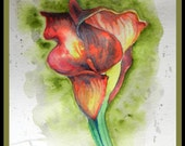 """Original Water color Painting, Red Calla Lily, 160403, 8""""x10"""", flower, red, green"""