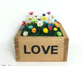 LOVE in a Little Wooden Box - Little Fairy Bloom set. Real miniature flowers to display indoors makeforgood