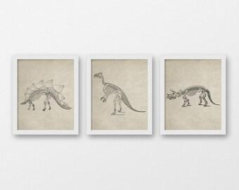 Vintage Dinosaur Skeleton Art Print Set - Vintage Wall Art - Set of 3 Prints