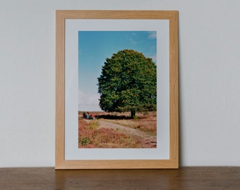 "Photo print ""Tree in Autumn"" // Analog photography // Wall art // Art print"