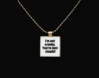 Cranky necklace, I'm not cranky, you're stupid, funny jewelry, silver pendant, novelty necklace, cute pendant, funny necklace, sarcasm
