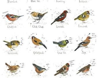 Garden Bird Poster Print Michelle Campbell Art