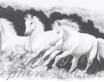 "Giclee fine art print of original pencil drawing ""On the Run"", horse pictures, horse drawings, white horses, horse paintings, horse art"