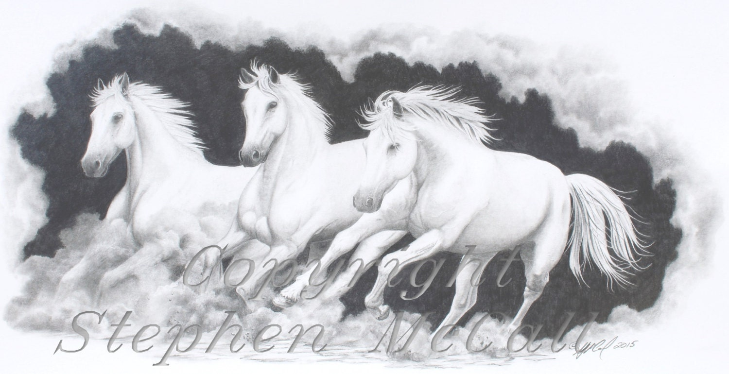giclee fine art print of original pencil drawing on the