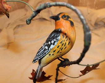 Carved Blackburnian Warbler in Fall Foliage