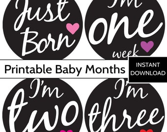 PRINTABLE Milestone Stickers, Baby Girl Baby Month Stickers - INSTANT DOWNLOAD