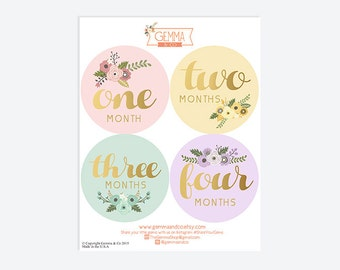 The London | Floral Baby Girl First Year 12 Month Growth Sticker Set