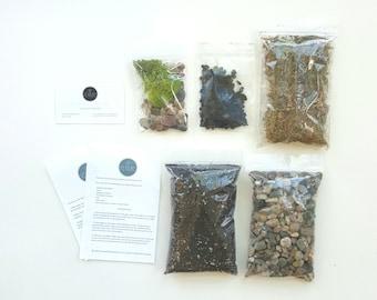 Succulent terrarium BASICS, terrarium kit, terrarium supplies, mini garden, diy gift, birthday gift