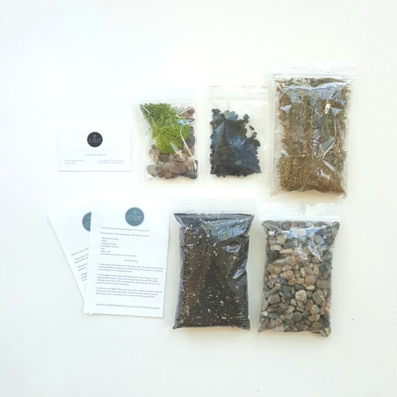 Succulent terrarium basics terrarium kit terrarium supplies for Terrarium supplies