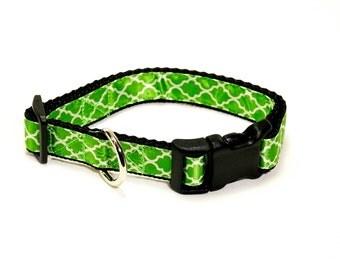 "Green Quatrefoil Dog Collar (3/4"" width) - Small - Medium"