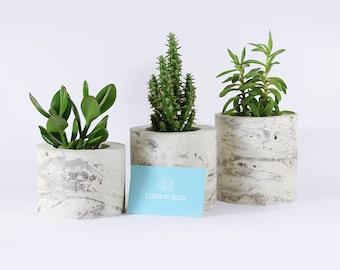 Trio of mini pots plants marble concrete - hand made