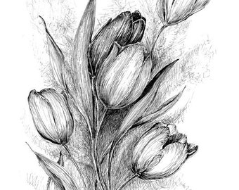 Tulip floral art, black and white botanical prints, original artwork wall decor, pen and ink poster, floral pen drawing, flower sketch art