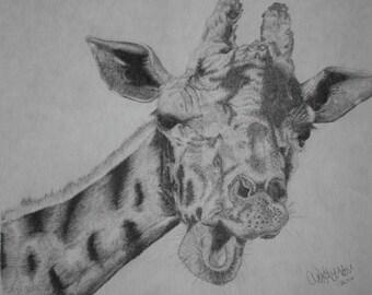 Giraffe drawing, Print from the original art work; 8 1/2 x 11