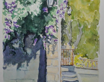 French flower  art watercolour painting, south of France