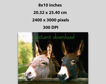 Instant Download 10x8 in, Canvas Painting Print of Two Donkeys, Fine Art Print (1007) Wall Decor