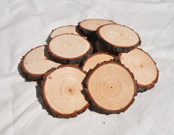 20 wood slices 6 8 cm rough cut wood rounds with rough for Wood trunk slices