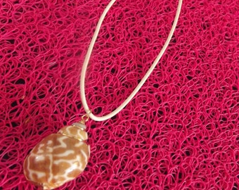 Pink gold sea shell necklace