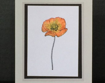 Handmade Greeting Cards-Beautiful Poppies (Set of 5 cards)-Notecards