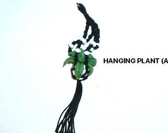 Miniature HANDMADE HANGING PLANT (A)